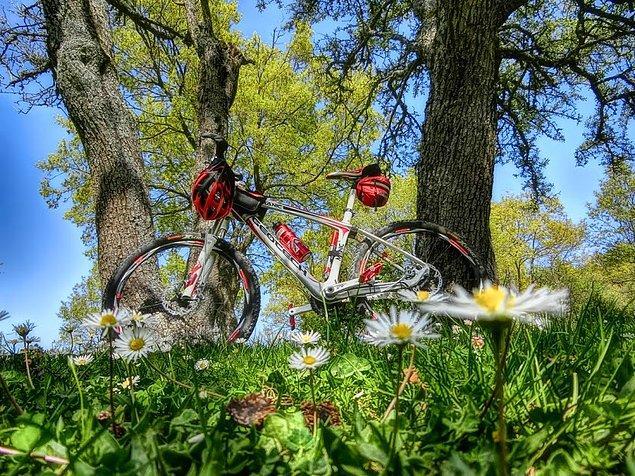 10. Aldırma bisikletinin marka ve modeline;