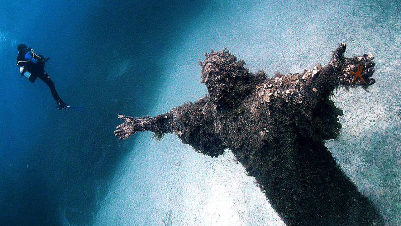 бекона приготовить интересные вещи под водой фото короткие сроки, гарантия