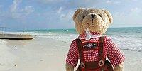 Медвежонок, проехавший 60 стран: Мистер Кул и его история