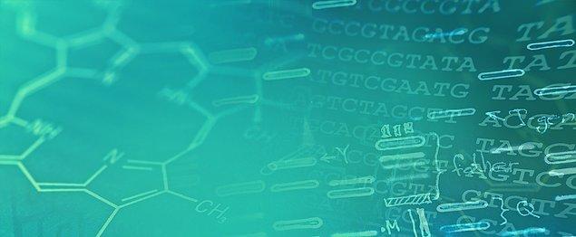 18. Fonksiyonel Genomikte Vak'a Çalışmaları