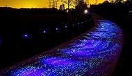 Эти светящиеся в темноте дорожки заставят любого научиться кататься на велике