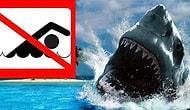 Только самые отважные отдыхающие осмелятся посетить эти 10 опасных пляжей!