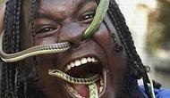 Эти 20 фактов о змеях точно повергнут вас в шок!