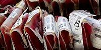 Have You Ever Wondered Why People With Different Blood Groups Can't Donate To Each Other?
