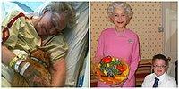 15 последних желаний умирающих людей, узнав которые вы не сможете сдержать слез