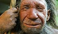 Вот какие удивительные выводы сделали ученые, исследовав останки челюсти древнего человека