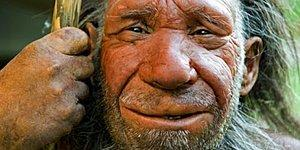 You'll Be Very Surprised To Find Out What's Been Found In A 49,000 Year-Old Neanderthal's Teeth!