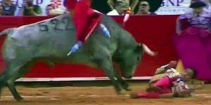 Matador Has Rectum Rebuilt After Raging Bull Rams Its 12-inch Horn Into Him!