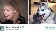 10 доказательств того, что Анна Кендрик - самая уморительная медийная персона
