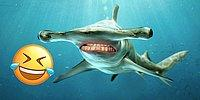 Sharks With Human Teeth Is The Funniest Thing You'll See Today!