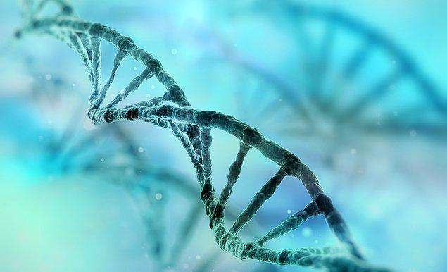 11. İnsan genomunun şifresinin çözülmesi (2003)
