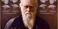 The Things You Knew About Charles Darwin And The Theory Of Evolution Are Wrong