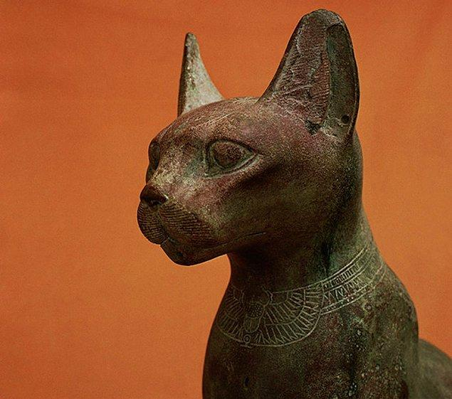 Tarihe baktığımızda kedilerin kimi toplumlar için özel bir yeri olduğunu görürüz.