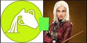Тест: Выбери свой знак Зодиака, и мы скажем, кто ты из Гарри Поттера