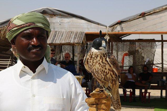 3. Falcon Souq