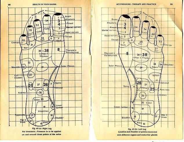 Ve ayak parmaklarımızın tümünde farklı organları temsil eden meridyen noktaları yer almaktadır.