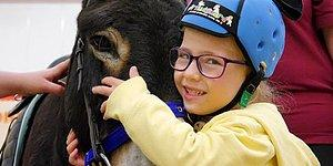 Therapy Donkey Helps A Mute Girl To Speak Again, And It's Beyond Heartwarming!