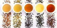 Чайная пауза: польза и вред 10 самых популярных видов чая