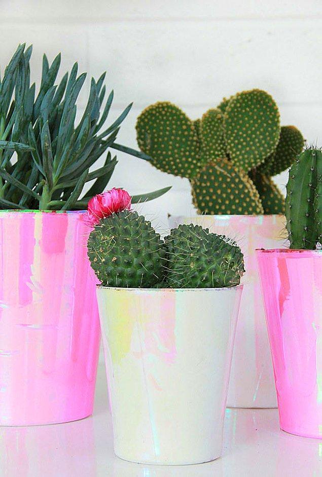 8. Evinde ve ofisinde çiçeksiz yapamayanlara bir küçük öneri daha...
