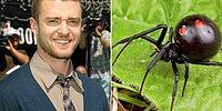 14 Celebrities And The Things That Scare The Hell Out Of Them!