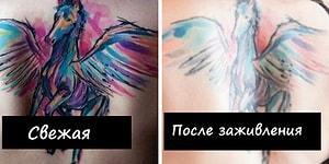 Думаете сделать татуировку? Эти 14 фото расскажут вам, что происходит с тату со временем