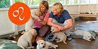 Тест: Узнай, какая собака тебе подходит по знаку Зодиака