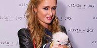 15 Insane But True Things You Never Knew About Paris Hilton!
