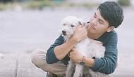 Парень показывает бездомным собакам, что такое объятия, и это очень трогательно!