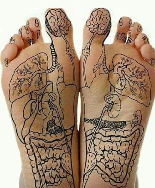 Your Foot Has The Full Map Of Your Body And Here Is How To Read It ...
