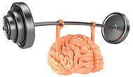 Science Says You Can Exercise Your Brain And Yes It Will Improve!