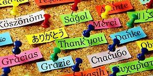 Тест: Только 10% людей на земле смогут узнать эти 11 языков по их написанию