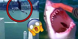 17 People Who Do Crazy, Dangerous And Stupid Things Just For Fun!