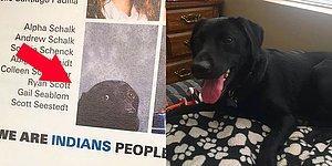 В этом выпускном альбоме есть фото собаки, и это не чья-то шутка...