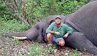 Karma?: Big Game Hunter Killed When Shot Elephant Collapsed On Top Of Him