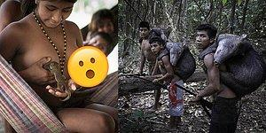 On The Brink Of Extinction: 14 Stunning Photos Of The Awa Amazon Tribe!