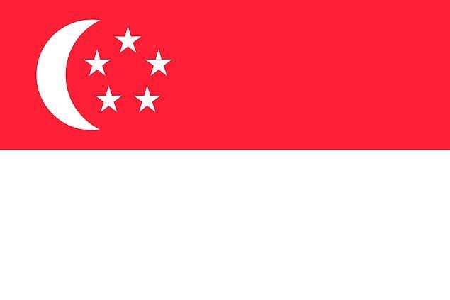 9. Bu bayrak hangi ülkeye ait olabilir?