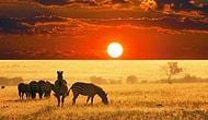 36 убедительных причин посетить Африку