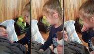 Дочка впервые увидела папу без бороды. Ее реакция просто бесценна :)