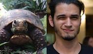 Черепаха, которая ушла из дома на три недели… чтобы поразвлечься без хозяина