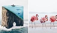 18-летняя художница совмещает неожиданные объекты, создавая сюрреалистичные фото