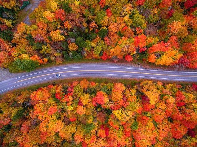 9. New Hampshire