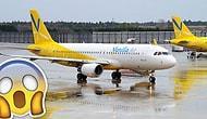 Рождённый ползать - летать не может: инвалид поднимался на борт самолёта ползком