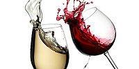20 вещей, которые должен знать каждый поклонник вина 🍷
