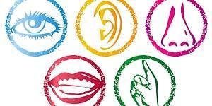 Тест: Какое из пяти чувств у вас развито лучше?