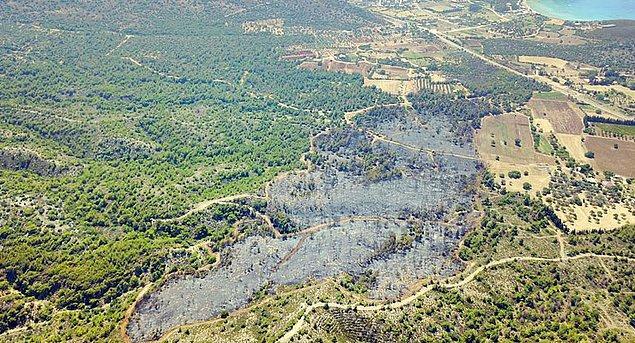 Datça'da cuma günü çıkan yangında küle dönen 4 hektar alan, objektiflere böyle yansımıştı...