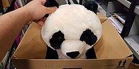 Мама не смогла купить сыну игрушку-панду, и он оставил на коробке трогательную записку 😭