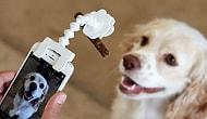 Специальная насадка на смартфон позволит сделать идеальное фото вашего питомца