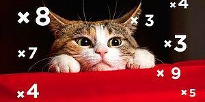 Тест: Сможете ли вы пройти этот несложный, на первый взгляд, математический тест? Часть-2