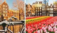 20 причин, по которым вы просто обязаны посетить Амстердам