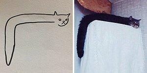 Когда учитель говорит, что ты не умеешь рисовать котов, а ты делаешь это божественно